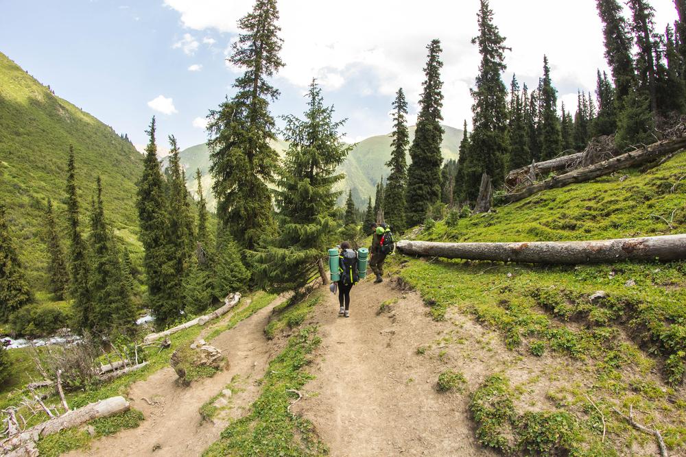 Trail degli Appalachi consigli utili