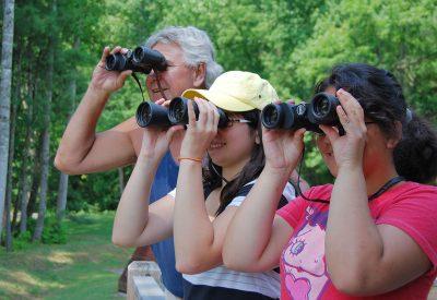 Birdwatching, binocoli trekking