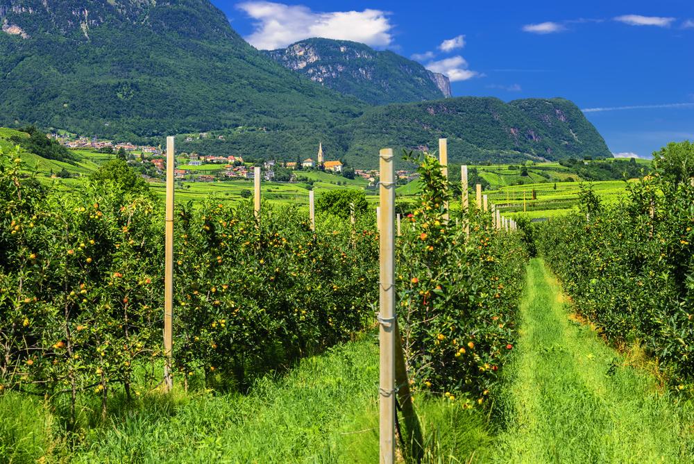 Trekking Tirolo, turismo green in Austria