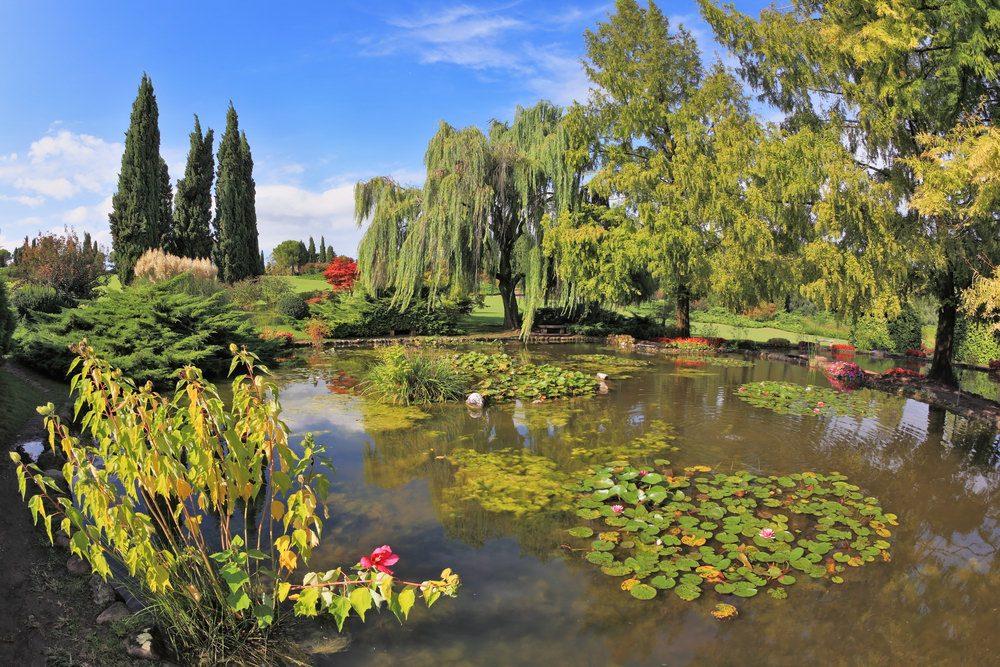 Parco giardino sigurt un 39 oasi naturale sulle sponde del mincio good trekking - Parco giardino sigurta valeggio sul mincio vr ...