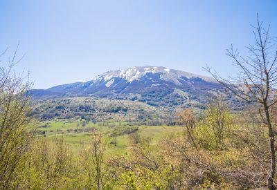 Tratturo Magno Abruzzo