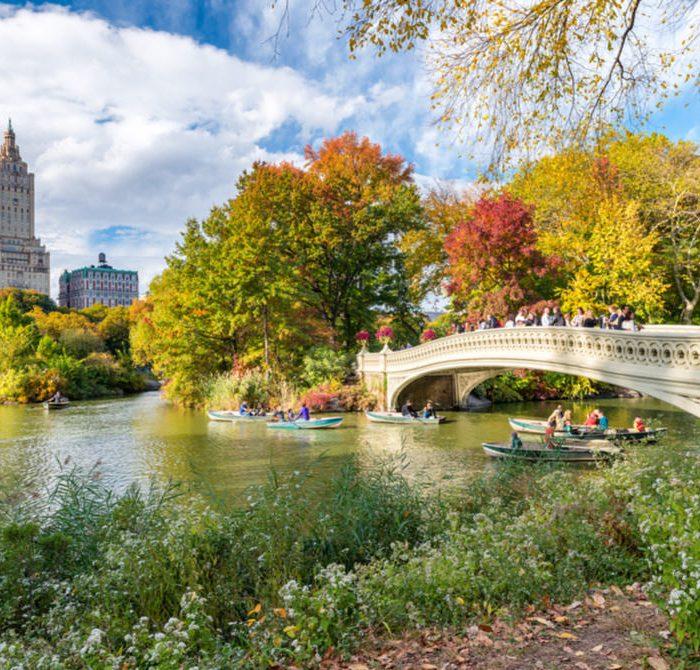 Turismo sostenibile New York, Central Park