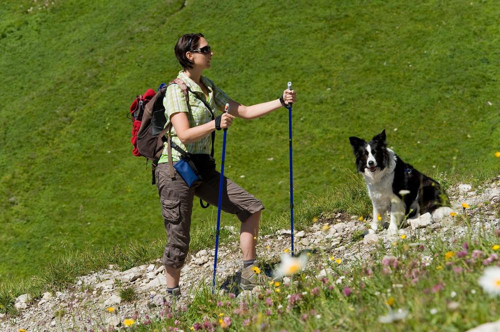 trekking con animali_59857213