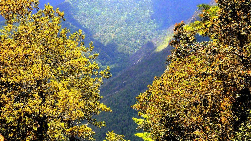 Valle del Paro, Bhutan