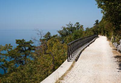 Strada Napoleonica, Trieste