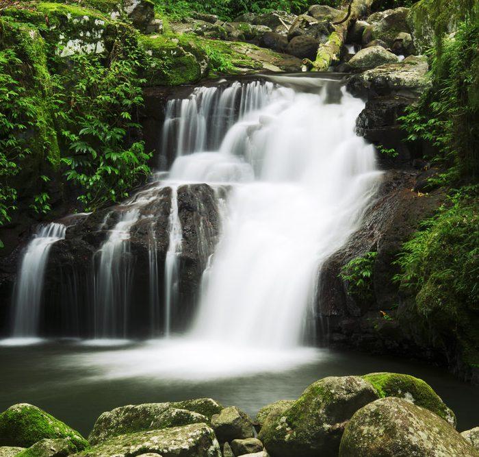 Gold Coast trekking, Lamington National Park
