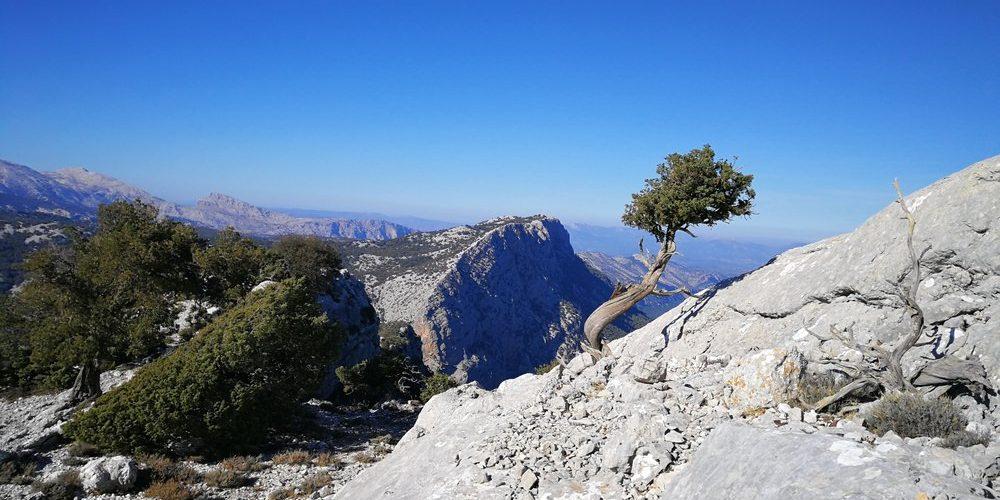 Trekking Sardegna, Supramonte