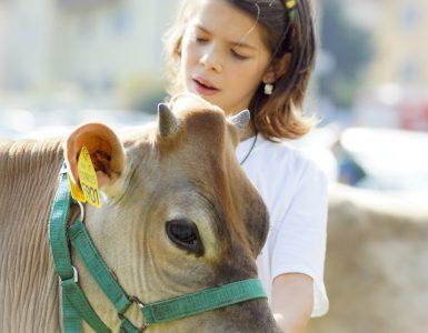 esperienze autentiche_desmalgada,mondo contadino,festival polenta (18)