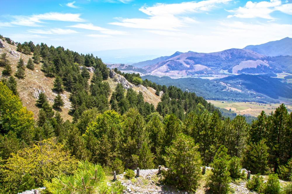 Monte Curcio