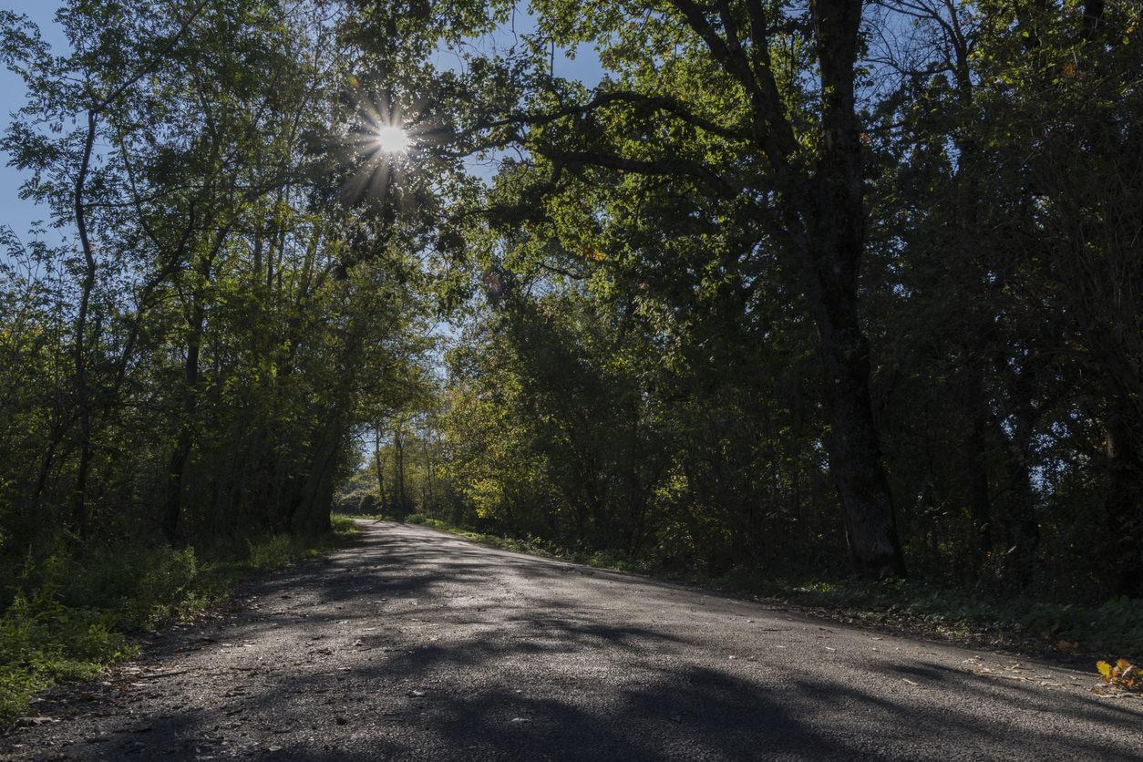 Monte Tuscolo, strada