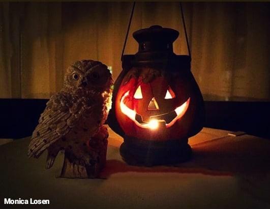 Halloween viaggi sostenibili