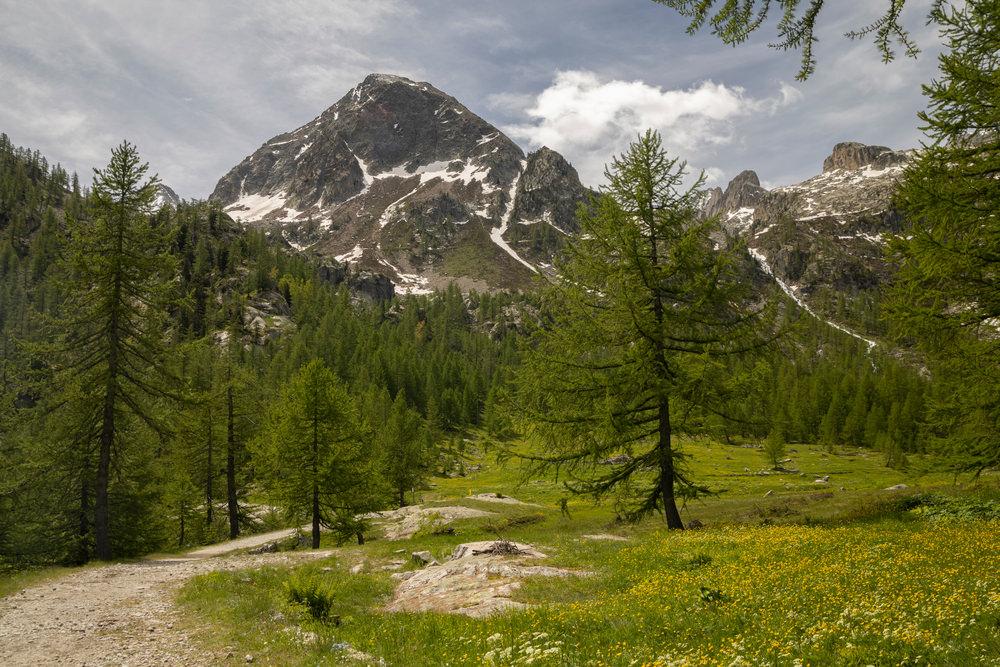 Pian del Valasco, Ciaspole Piemonte