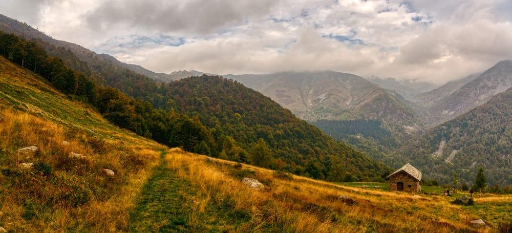 Oasi Zegna, forest bathing Piemonte