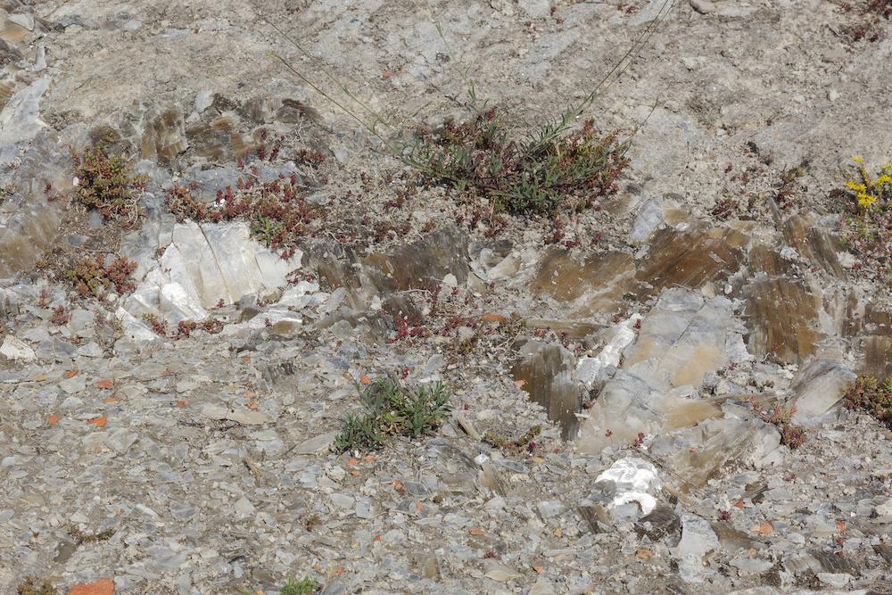 Rocce di gesso, Sentiero dei Cristalli