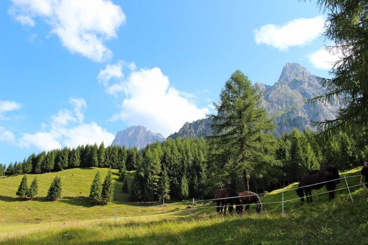 Vacanze relax in montagna